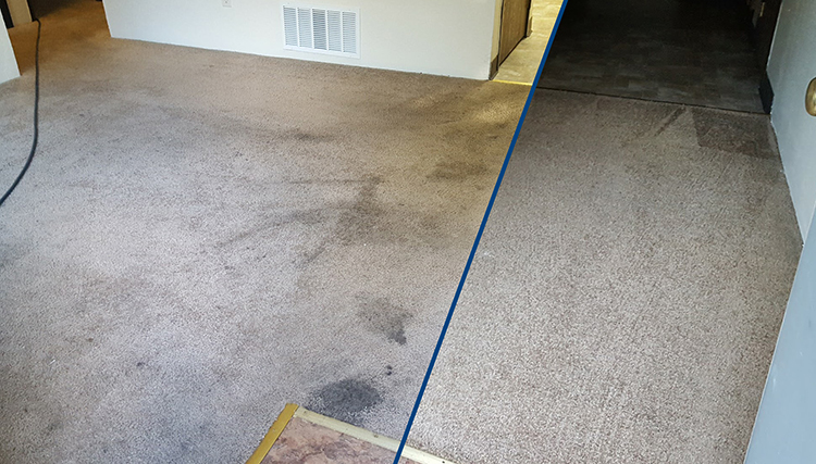 Before and After Carpet Cleaner example